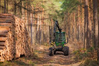 biomassemoyen.jpg